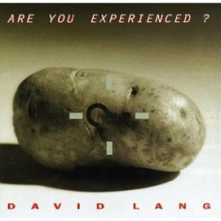 lang-are-you-expirienced_0